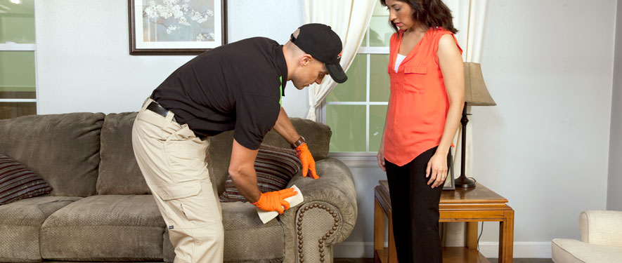 Antioch, CA carpet upholstery cleaning