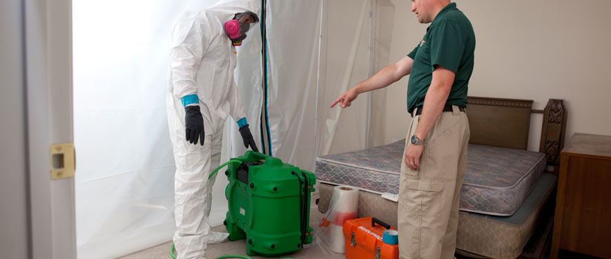 Antioch, CA mold removal process
